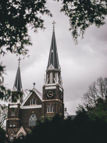 church spire behind trees